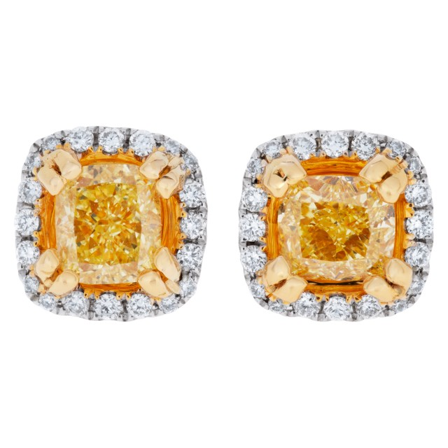 Yellow diamond stud earrings in 18k white and yellow gold image 1